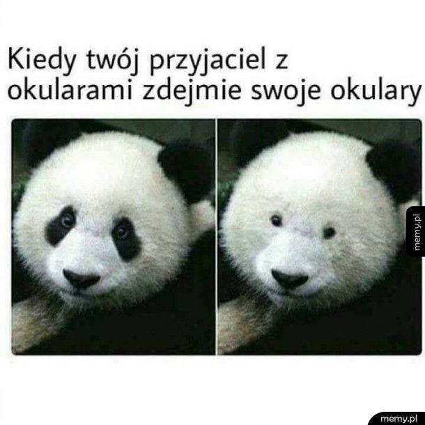 Znajomi W Okularach Memypl