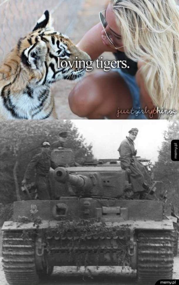 Kochane Tygrysy