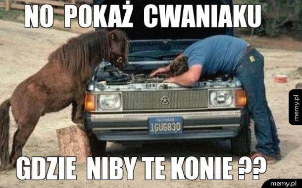 Konie mechaniczne