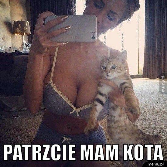 Patrzcie mam kota