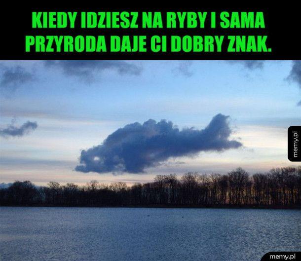 Rybna chmura