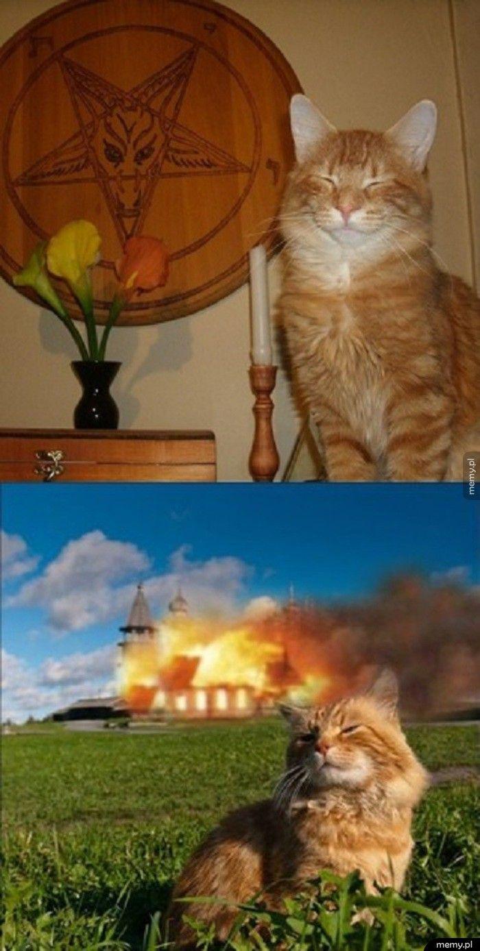 Cz Ten Koteł?