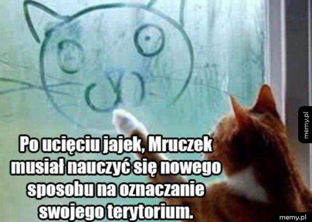 Mruczek