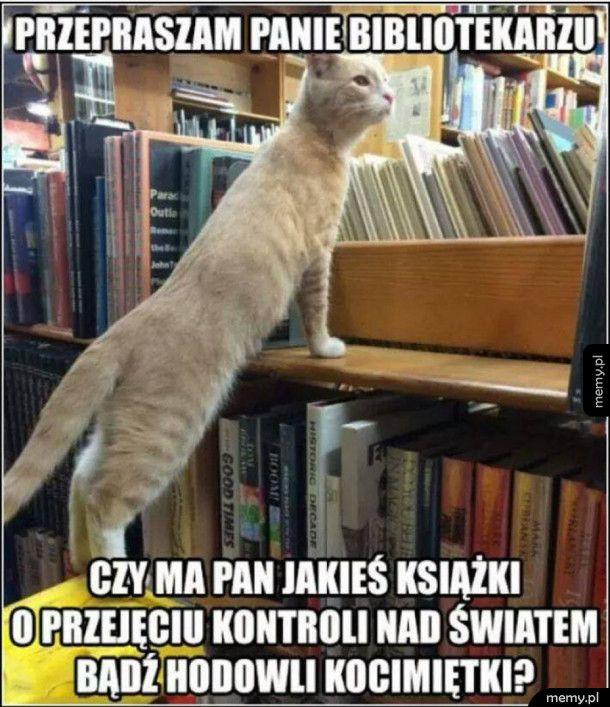 Przychodzi kot do biblioteki...
