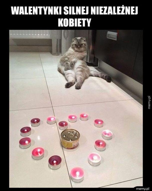 Pani i kot