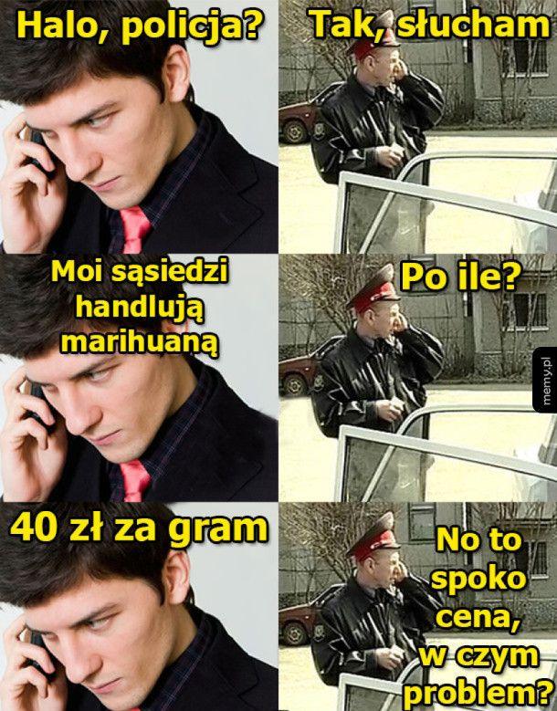 Halo, policja