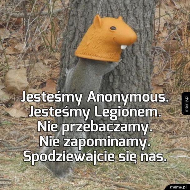 Nawet wiewiórki chcą zmieniać świat