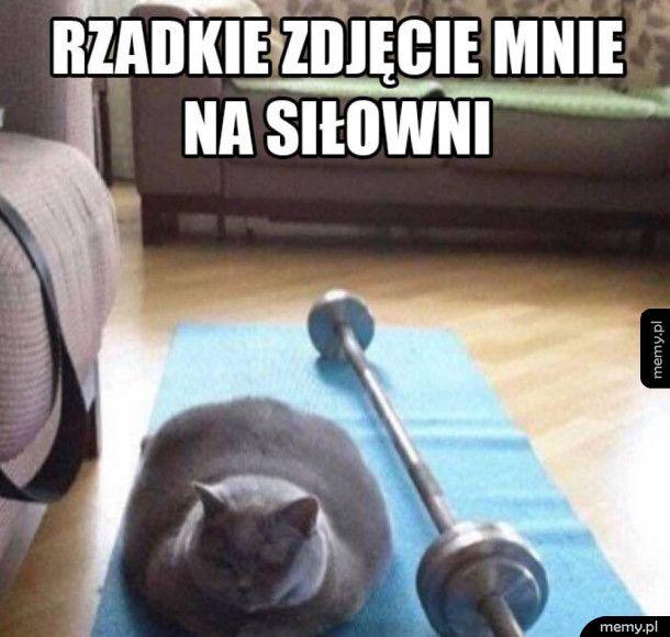 Ja na siłowni