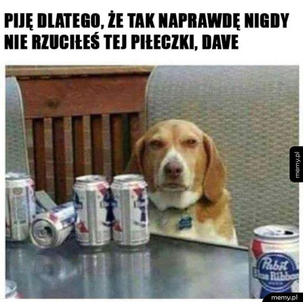 Zdradzony pies
