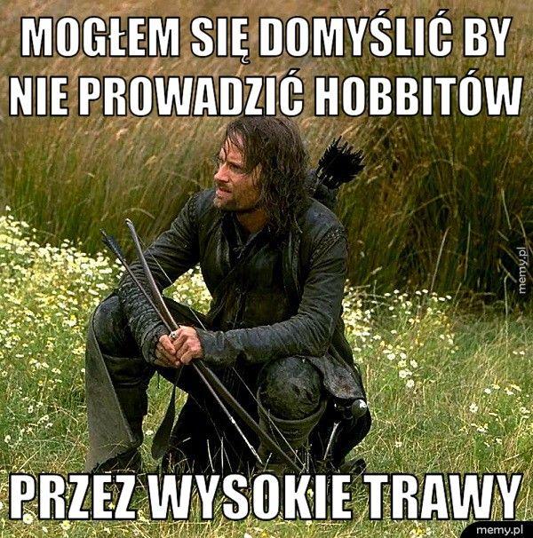 Mogłem się domyślić by nie prowadzić hobbitów   przez wysokie trawy