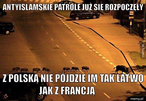 Antyislamskie patrole już się rozpoczęły Z Polską nie pójdzie im tak łatwo jak z Francją