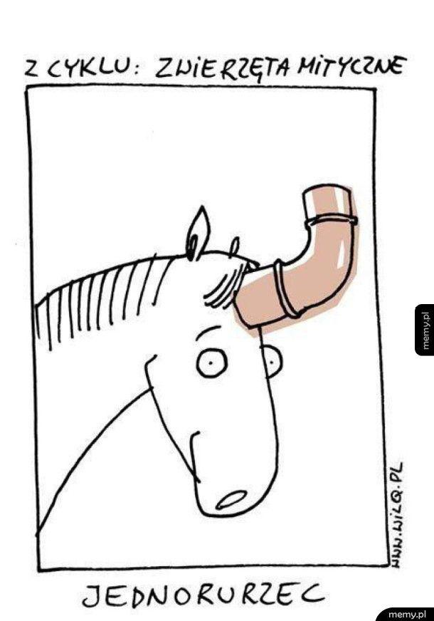 Zwierzęta mityczne