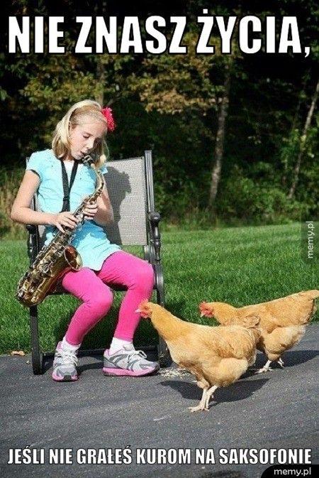 Nie znasz życia,  Jeśli nie grałeś kurom na saksofonie