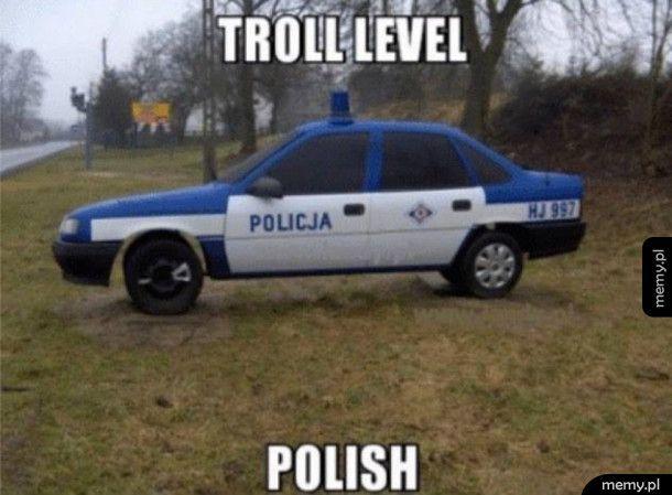 Polski trolling