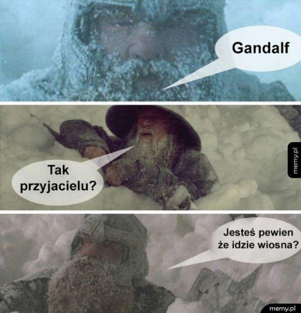 Coś nie tak Gandalf