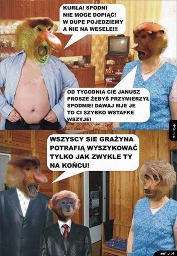 Janusz z Grażyną idą na wesele