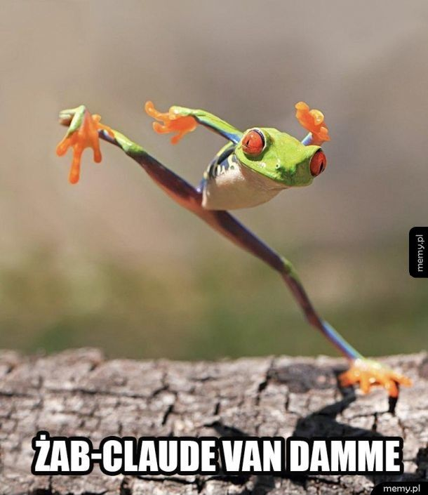 Żab-Claude Van Damme