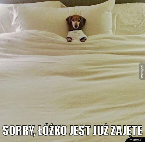 Sorry, łóżko jest już zajęte