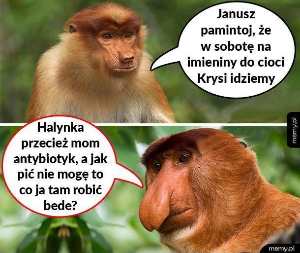 Biedny Janusz