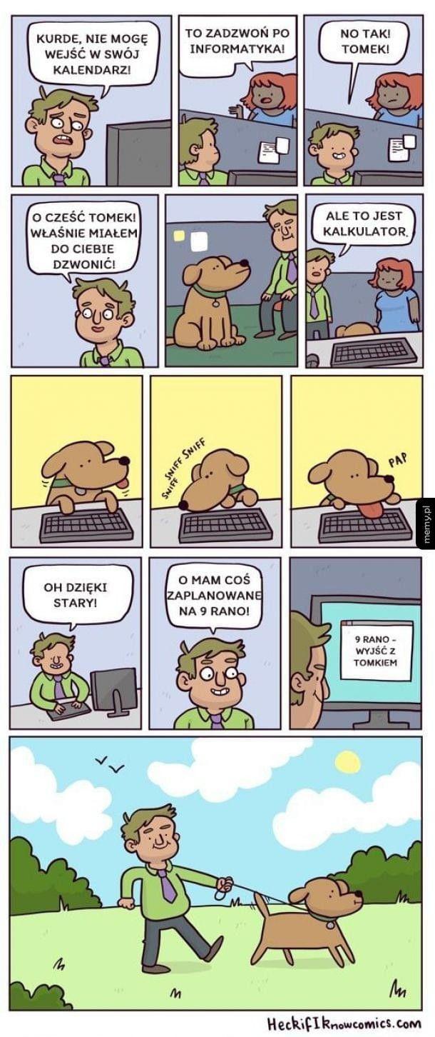 Pies informatyk