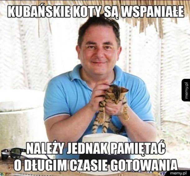 Kubańskie koty