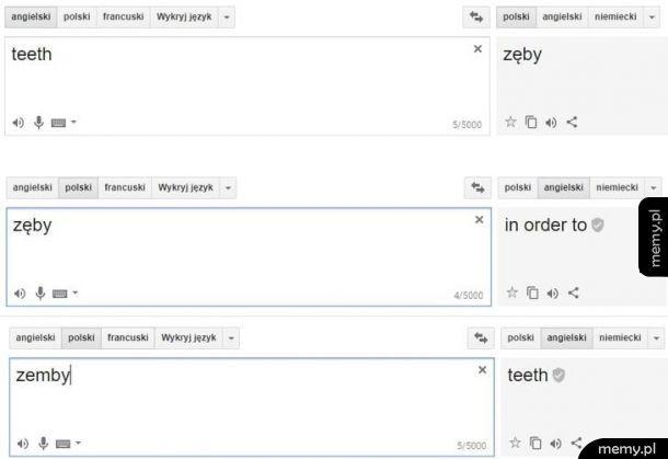 Co ten tłumacz google