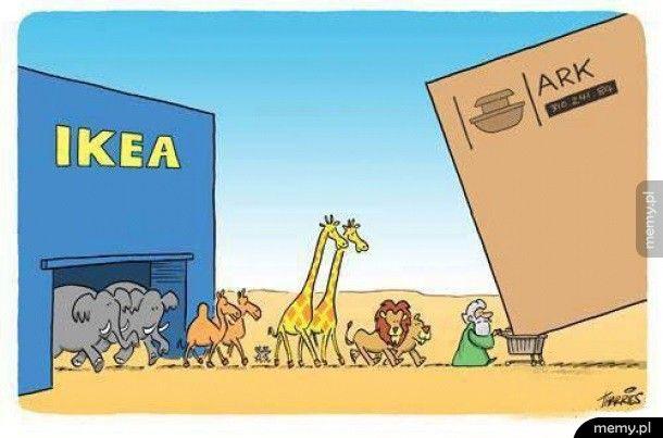 Gdyby arka była budowana w naszych czasach