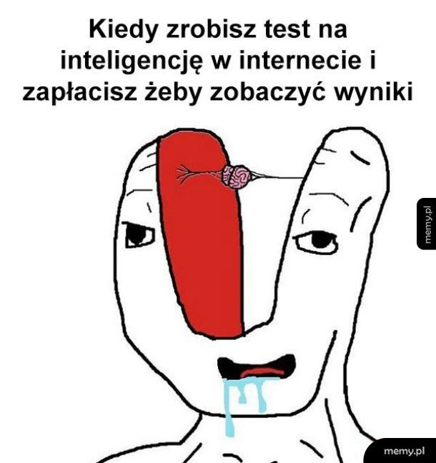 Test na inteligencje