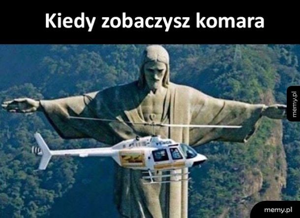 Komarek