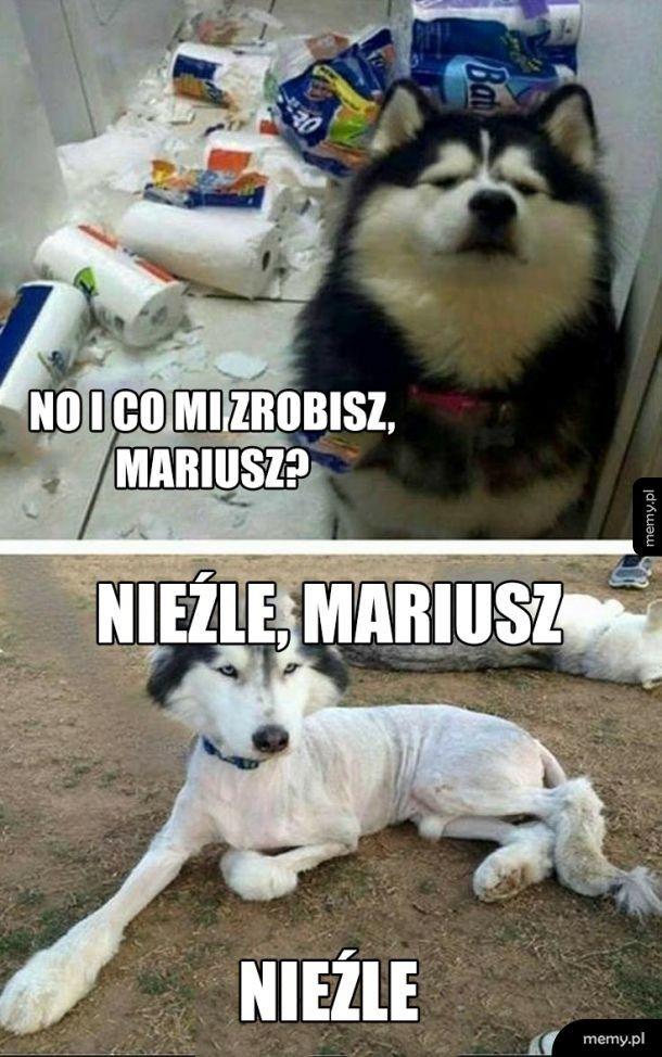 No i co mi zrobisz, Mariusz