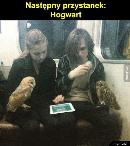 Następny przystanek: Hogwart