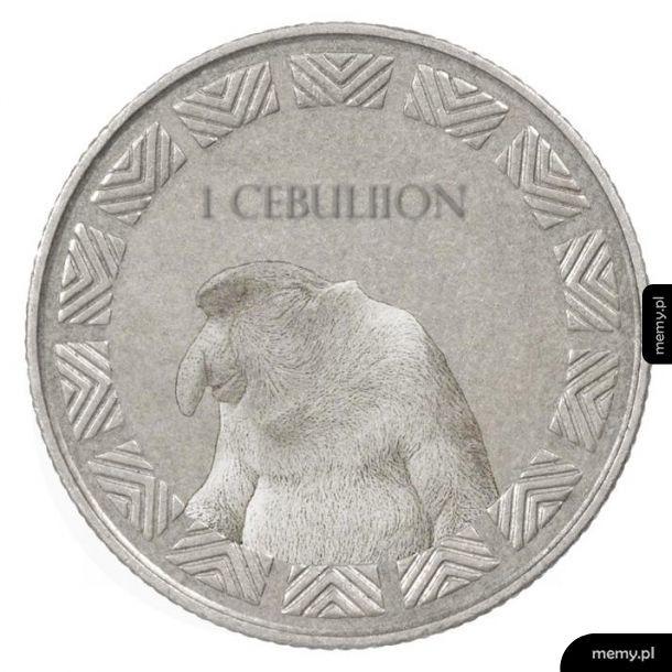 Nowa waluta w polsce