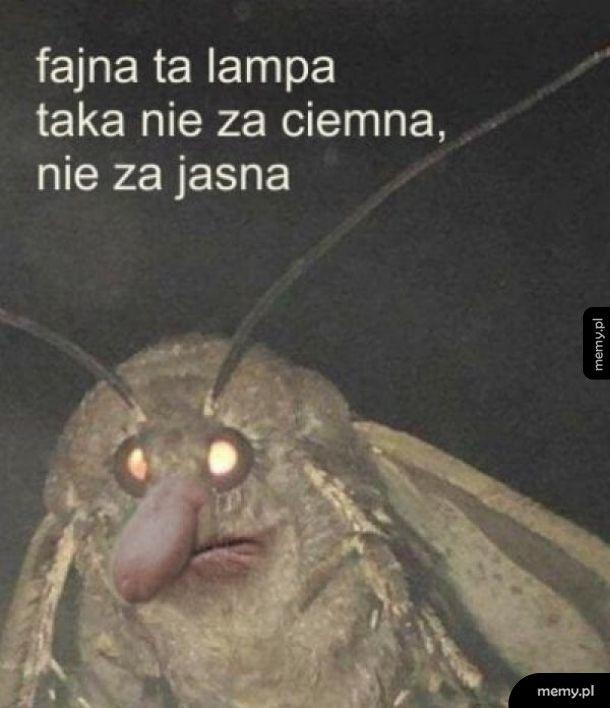 Polska ćma