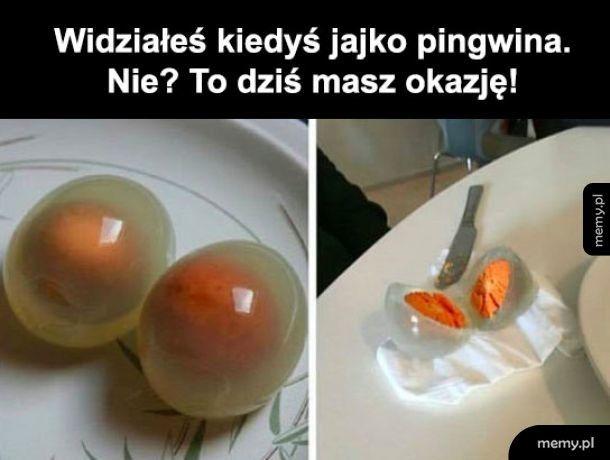 Jajeczko