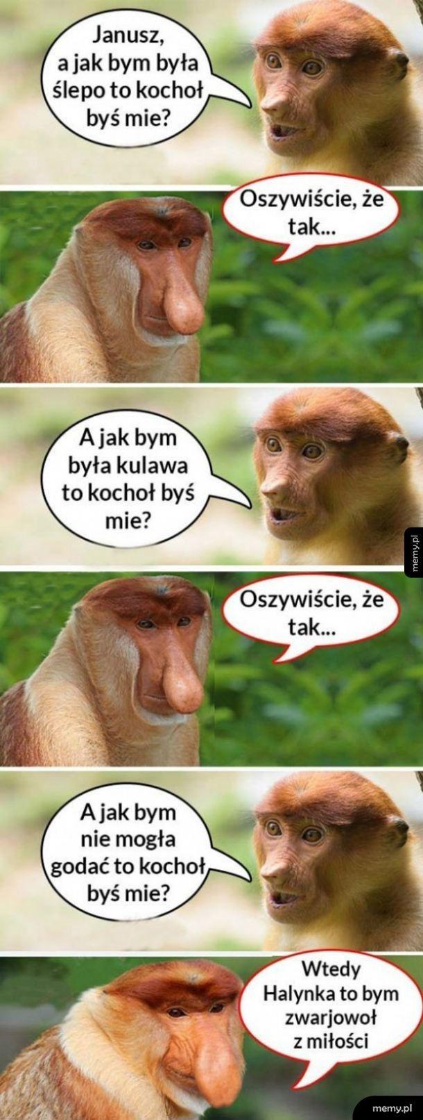 Zakochany Janusz