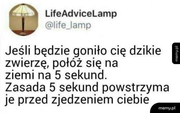 Lifehack!