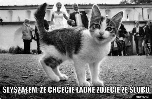 Słyszałem, że chcecie ładne zdjęcie ze ślubu
