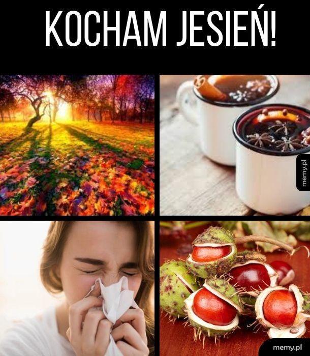 Kocham jesień!