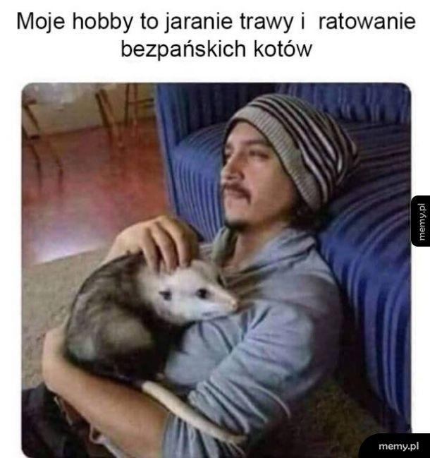 Dziwne hobby