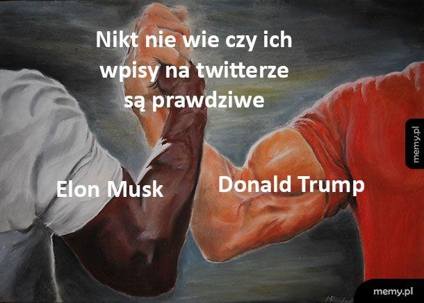Wpisy na twitterze
