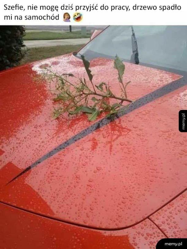Straszny wypadek