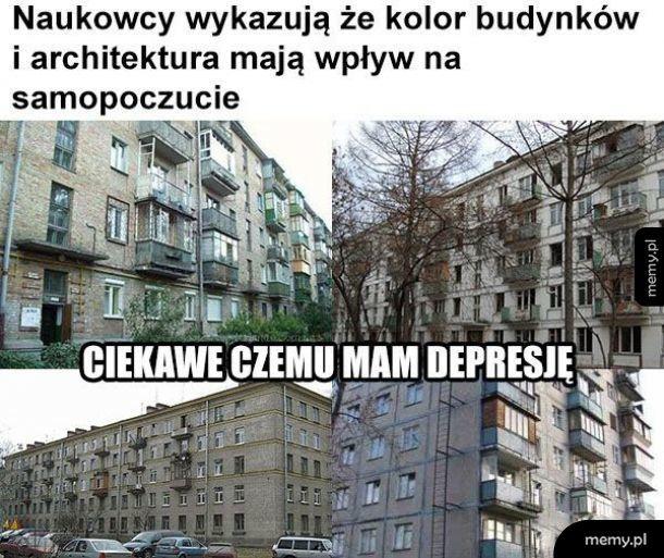 Kolor budynków