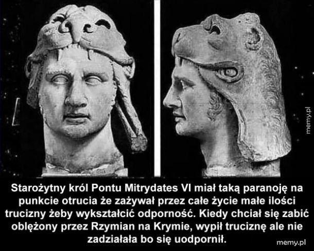Paranoja starożytnego króla