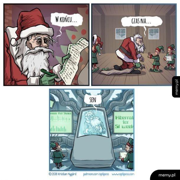 Świąteczny sen