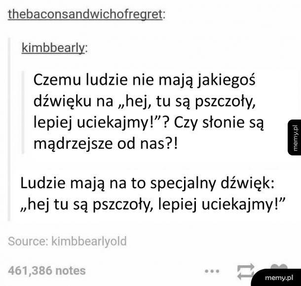 Istnieje coś takiego jak język...