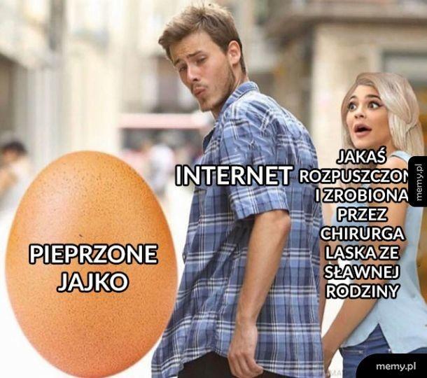 Internet wybrał mądrze