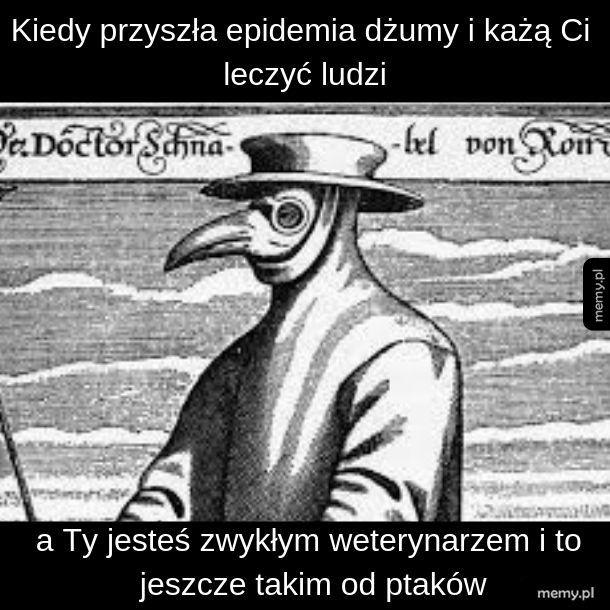 Lekarz od ptaków to weterynarz czy urolog?