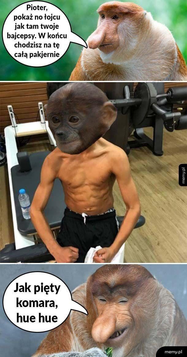 Pioter siłacz