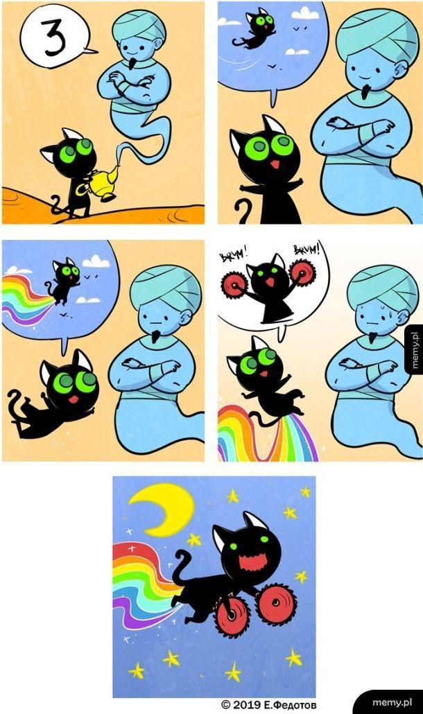 Trzy życzenia kota