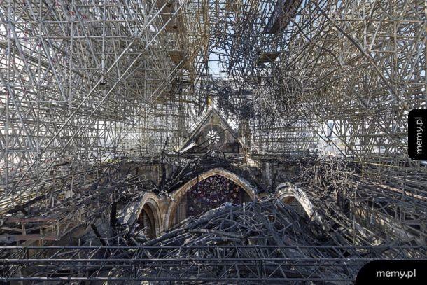 Tak teraz wygląda dach katedry Notre-Dame